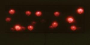 glowing-2001-ganz